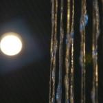 Nahaufnahme Fadenbrunnen Wasserfall