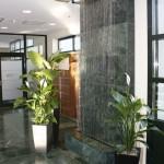 Fadenbrunnen mit Pflanzen