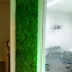 Wasserwand mit rechtechiker Grünen Wand